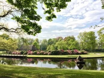 Park Rusthoff - Paviljoen Sassennest